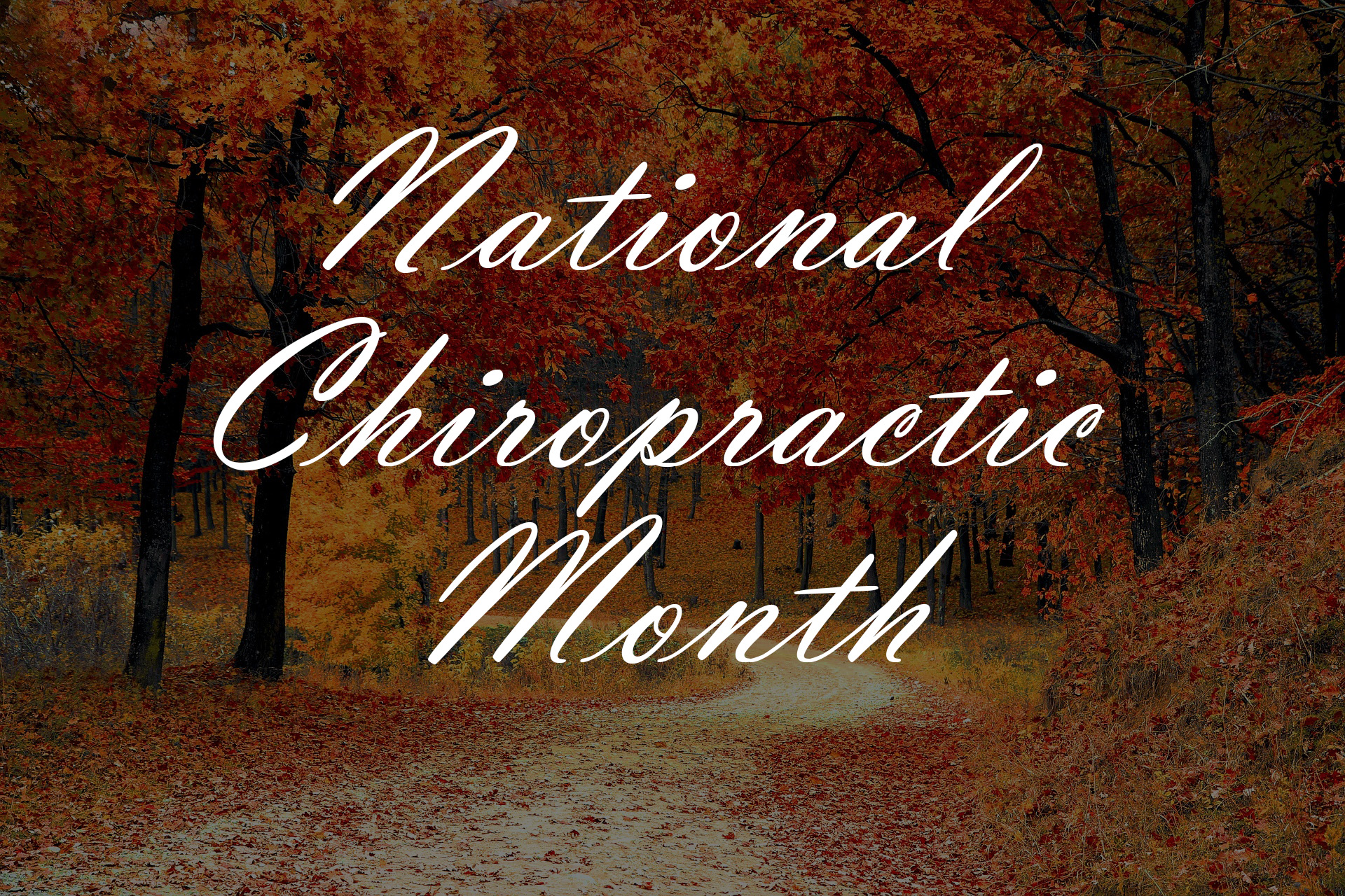 Back Pain in Focus During National Chiropractic Month